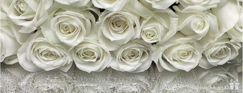 belie-rozy-v-podarok
