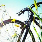 Как оригинально подарить велосипед