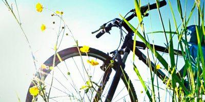 Необычно подарить велосипед